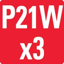 P21Wx3